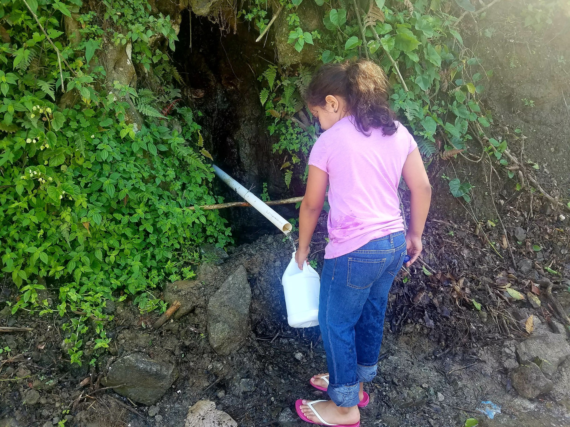 A young girl in a pink shirt, jeans, and sandals fills up water using a reused plastic jug from a roadside water source in Adjuntas, Puerto Rico