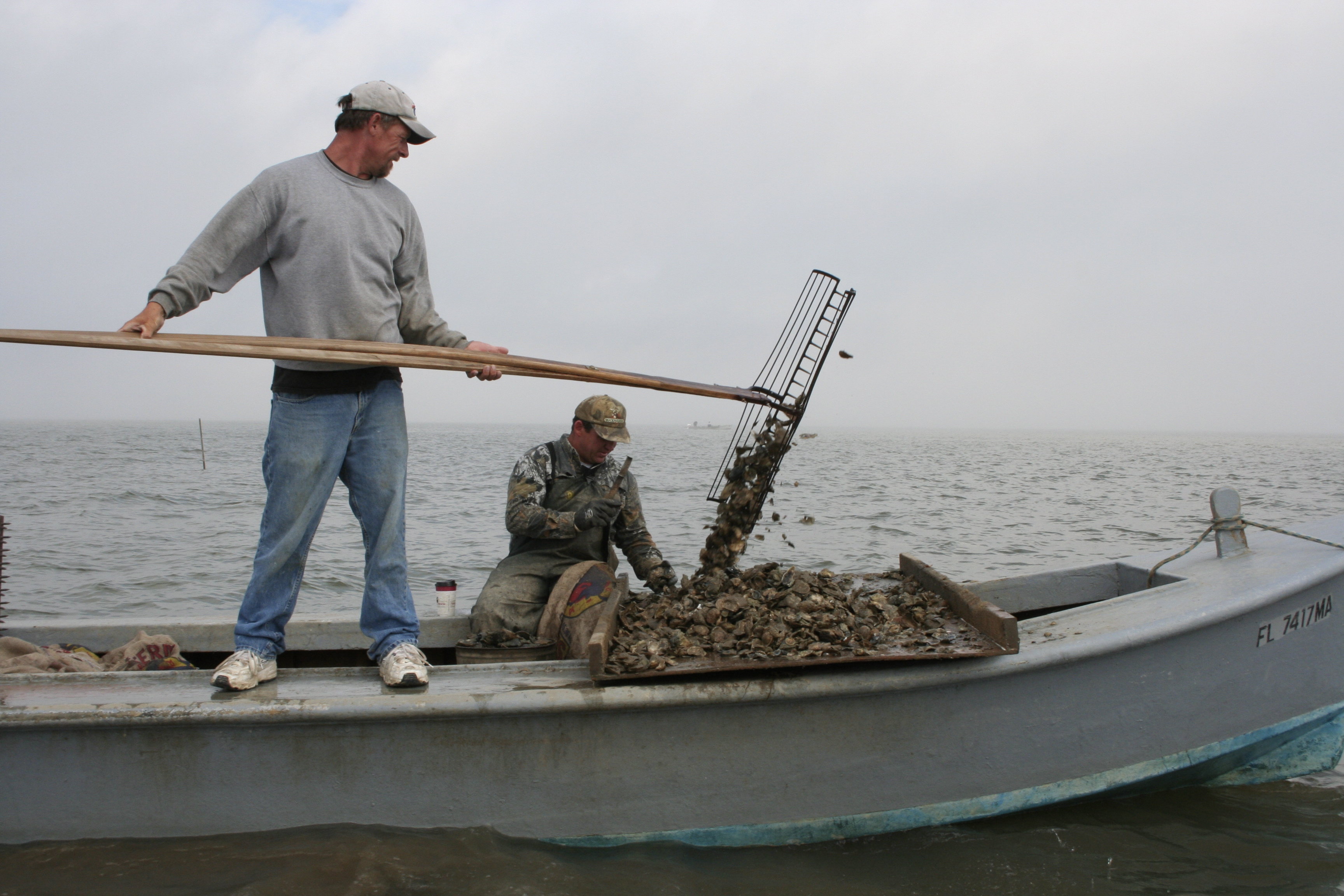 Two fishermen oystering in Apalachicola Bay.